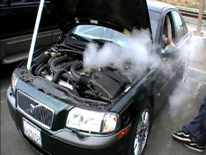 """no care is """"maintenance free"""", needs an oil change"""
